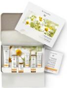 Dr. Hauschka Face Care Kit Purifying - Дорожный набор для комплексного ухода за жирной проблемной кожей